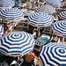 Striped Beach Umbrellas 2019