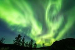 Aurora Borealis (Jeff Milsteen) Tags: northern lights aurora borealis geysir iceland 2019 september