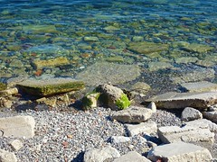 """""""You just have to live and life will give you pictures.""""  - Henri Cartier Bresson (Trinimusic2008 -blessings) Tags: trinimusic2008 judymeikle nature summer september 2019 toronto to ontario canada sonydschx80 lake lakeontario water"""