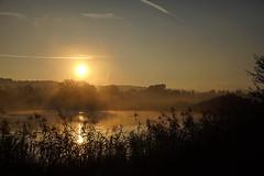 Sunrise at Stillle Reuss (markus_kaeppeli) Tags: river reuss reusstal freiamt sony sigma24105f4 a99ii