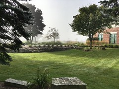 Library Gardens (Lester Public Library) Tags: 365libs librariesandlibrarians library libraries publiclibrary garden gardens librarygardens grass tree trees building fog mist lakemichigan lesterpubliclibrarytworiverswisconsin wisconsin tworiverswisconsin