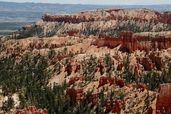 Bryce National Park - More Hoodoos (Susan Roehl) Tags: nationalparkstour2017 brycecanyonnationalpark distinctgeologicalstructures paunsauguntplateau southwesternutah usa hoodoos highestelevation9000feet settledbymormons ebenezerbryce 35835acres sueroehl panasonic lumixdmcgh4 12x35mmlens handheld photographedfrominspirationpoint coth5 ngc