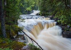 Fulufallen (jungfrulin) Tags: dalarna fulufallen waterfall sverige sweden vattenfall