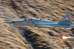 DIOS_AXALP18_1154ED1600P (Dimitrije Ostojic) Tags: f5 tiger swiss alps axalp military aircraft aviation