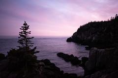 Muted (Aymeric Gouin) Tags: usa etatsunis maine atlantic atlantique ocean sea mer sunset violet pink purple nature cliff falaise travel voyage seascape fujifilm xt2 aymgo aymericgouin