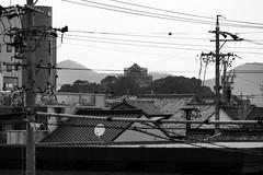 190911_131_EOSR5075 (oda.shinsuke) Tags: 駅 station railway 犬山駅 inuyamastation 犬山城
