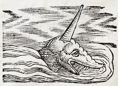 Anglų lietuvių žodynas. Žodis sea-unicorn reiškia jūra-vienaragis lietuviškai.