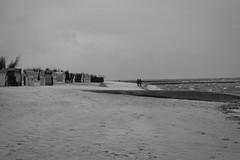 IMG_0988 (ohnekussinsbett) Tags: cuxhaven nordsee wattenmeer strand elbe sturm