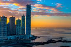 Sunrise in Panama City (FVillalpando) Tags: sunrise panama city architecture clouds sky color water ocean light ngysa