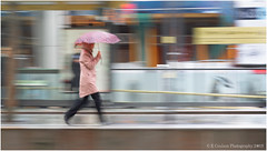 If I Run (Fermat 48) Tags: rain umbrella stpeterssquare tramstop pink raincoat platform walking running canon eos 7dmarkii mac