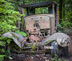 Old Truck - Alta Lake Walk, Whistler, BC, Canada (stevecarney) Tags: old car wreck rotting yellow outdoors rust rusty abandoned whistler blue truck brown red moss vegetation