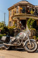 Moto Guzzi (Uta_kv) Tags: beautifulwoman motorcycle canon5d bike canon5dclassic teamcanon toronto beautifulday