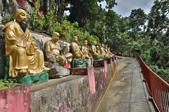 Monastry of 10000 Buddhas (twomphotos) Tags: hong kong hongkong china city urban life skyscraper culture temple monastry