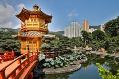 Nan Lian Garden (twomphotos) Tags: hong kong hongkong china city urban life skyscraper culture temple monastry
