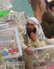 IMG_1878 (stevefenech) Tags: afghanistan central asia stephen fenech steve fennock adventure travel backpacking country afghani people locals kabul capital chicken street