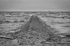 IMG_0991 (ohnekussinsbett) Tags: cuxhaven nordsee wattenmeer strand elbe sturm