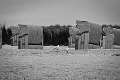 IMG_0957 (ohnekussinsbett) Tags: cuxhaven nordsee wattenmeer strand elbe sturm