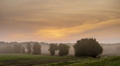Early morning in Denmark