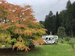 Parked up in Benmore Botanical Gardens