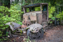 Old Truck - Alta Lake Walk, Whistler, BC, Canada (stevecarney) Tags: old car wreck rotting outdoors rust rusty abandoned whistler blue truck brown red moss vegetation