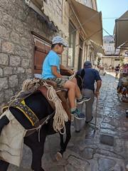 Hydra, Greece (marmarinou) Tags: greece greek europe european hydra greekislands animals donkey youngandold generations