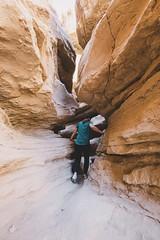 IMG_1288.jpg (jgo_mo) Tags: hike desert anzaborrego canyon mountains coloradodesert statepark rocks california adventure southwest slot cactus park america southerncalifornia slotcanyon usa
