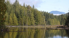 Haslam Lake Above the Weir (Paul den Ouden) Tags: haslamlake powellriver britishcolumbia bc landscape lakes