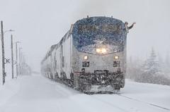 Wave in a snowstorm (Moffat Road) Tags: amtrak californiazephyr no5 5 train5 ge p42dc 193 snow wave snowstorm fraser colorado upmoffattunnelsub locomotive passengertrain railroad train co