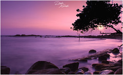 Twilight (dinukakavinda) Tags: lands landscape beach ocean sri lanka lankan ceylon dinuka kavinda d7200 purple sunset black long exposure