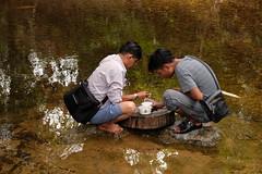 Burma larval survey (President's Malaria Initiative) Tags: entomology burma