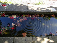IMG_7048 love these water ways (belight7) Tags: walled stoke poges bucks uk england memorial garden stokepoges