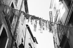 Rue Roucher (just.Luc) Tags: décoration fabric tissue montpellier hérault occitanie okzitanien france frankrijk frankreich francia frança bn nb zw monochroom monotone monochrome bw europa europe