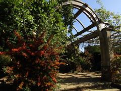 IMG_7062 (belight7) Tags: arch stoke poges memorial garden bucks uk england