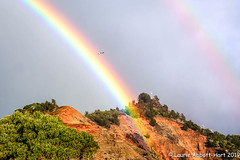 _DSF3170-Edit (Laurie2123) Tags: hawaii honeymoon laurieabbotthartphotography laurieturnerphotography laurietakespics odc odc2019 ourdailychallenge odt ourdailytopic poetry waimea canyon kauai helicopter rainbow doublerainbow