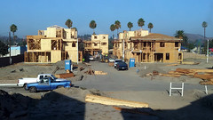 (Rich T. Par) Tags: pomona phillipsranch socal southerncalifornia losangelescounty lacounty constructionsite california palmtrees tree road suburb dirt civilengineering house lumber architecture framework wood plywood civilengineers sky backhoe backhoeloader loaderbackhoe digger heavyequipment tractor constructionvehicles