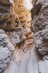 IMG_1341.jpg (jgo_mo) Tags: hike desert anzaborrego canyon mountains coloradodesert statepark rocks california adventure southwest slot cactus park america southerncalifornia slotcanyon usa