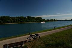 Bike to Work (Lutz Blohm) Tags: biketowork bike2work biketour arbeitsweg sonyfe24105mmf4goss sonyalpha7aiii rheinufer fluskilometer402