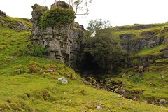 clint crags (kokoschka's doll) Tags: crag cave gill tree bank ireshope weardale