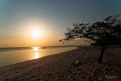 Alter do Chão - 001 (Vɑgner) Tags: belterra pará brasil sel1670 sony α6300 ilce6300 zeiss sonyvariotessarte1670mmf4zaoss variotessarte41670 riotapajós sunset pôrdosol pindobal