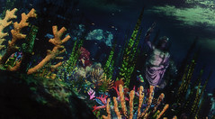 Lost Gardens of Thera (♛ Baronne ♛) Tags: secondlife mermaid mer sea sealife life ocean sirene calas shadow coral myth place sim region wow slurl location photograph real realistic statue olympe garden lost thera