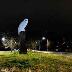 The Owl Statue on Thursday morning (garydlum) Tags: owlstatue publicart canberra australiancapitalterritory australia