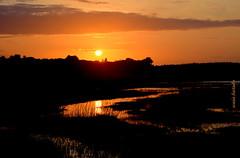 Quarta-sunset (sonia furtado) Tags: quartasunset sunset contraluz pds pordosol reflexo campodesantana nísiafloresta rn ne brasil brazil soniafurtado