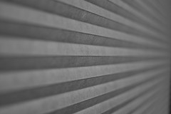 259/365 Honeycomb Blinds (OhWowMan) Tags: blackandwhite blackwhite bw black white monochrome my2019challenge 365project animageaday dailyphotography ohwowman nikon nikkor d3300 acdseepro9 365the2019edition 3652019 day259365 16sep19