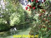 "2019-09-18         Rondje               Kromme Rijn      25 Km  (81) • <a style=""font-size:0.8em;"" href=""http://www.flickr.com/photos/118469228@N03/48756351946/"" target=""_blank"">View on Flickr</a>"