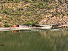 Covelinhas (**REGFA**) Tags: tren comboio vendimias linha do souro oporto porto vinho vendimia comboios comboiosdeportugal 1415 cp portugal duero rio