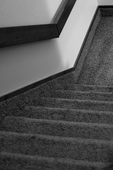 260/365 Carpeted Stairwell (OhWowMan) Tags: blackandwhite blackwhite bw black white monochrome my2019challenge 365project animageaday dailyphotography ohwowman nikon nikkor d3300 acdseepro9 365the2019edition 3652019 day260365 17sep19
