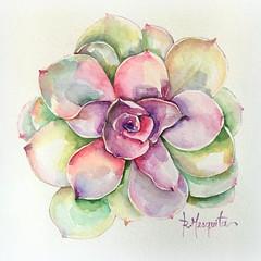 Flor de Suculenta (Roberta art) Tags: flor aquarela pintura artista suculenta arte watercolor painting art aquarelle
