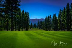 Old Greenwood-940257 (Jeffrey Balfus (thx for 5,000,000 views)) Tags: oldgreenwood sonyalpha tahoe golf truckee california unitedstatesofamerica