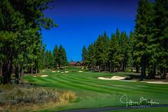 Old Greenwood-940251 (Jeffrey Balfus (thx for 5,000,000 views)) Tags: oldgreenwood sonyalpha tahoe golf truckee california unitedstatesofamerica