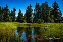 Old Greenwood-940244 (Jeffrey Balfus (thx for 5,000,000 views)) Tags: oldgreenwood sonyalpha tahoe golf truckee california unitedstatesofamerica lake reflections water